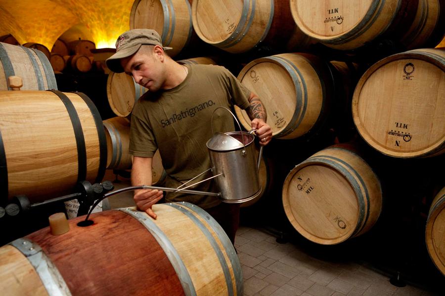 Botti di vino - SanPatrignano