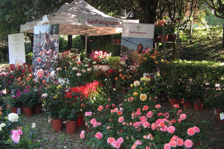 I giorni delle rose - San Patrignano